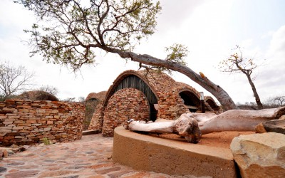 Mal-D-Africa-Parks-Mapungubwe-gallery-04