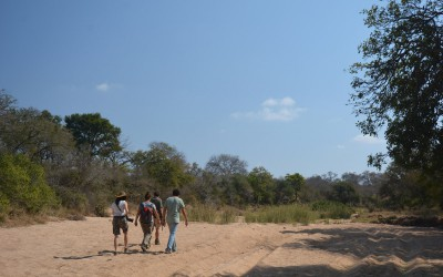 Mal-D-Africa-Parks-Private-Game-Reserve-gallery-02