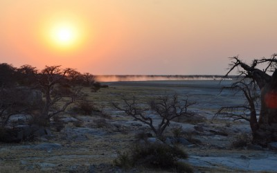 Mal-D-Africa-Countries-Botswana-gallery-03