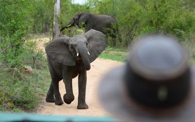 Mal-D-Africa-Itineraries-Beautiful-SA-Gallery-03