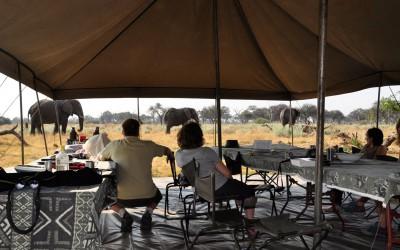 Mal-D-Africa-Itineraries-Northern-Botswana-Gallery-13