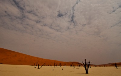 Mal-D-Africa-Countries-Namibia-gallery-10
