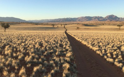 Mal-D-Africa-Namibia-Parks-Naukluft-gallery-01