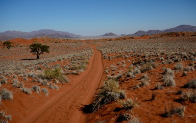 Mal-D-Africa-Namibia-Parks-Naukluft-gallery-04