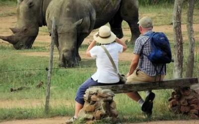5 hlane rhino